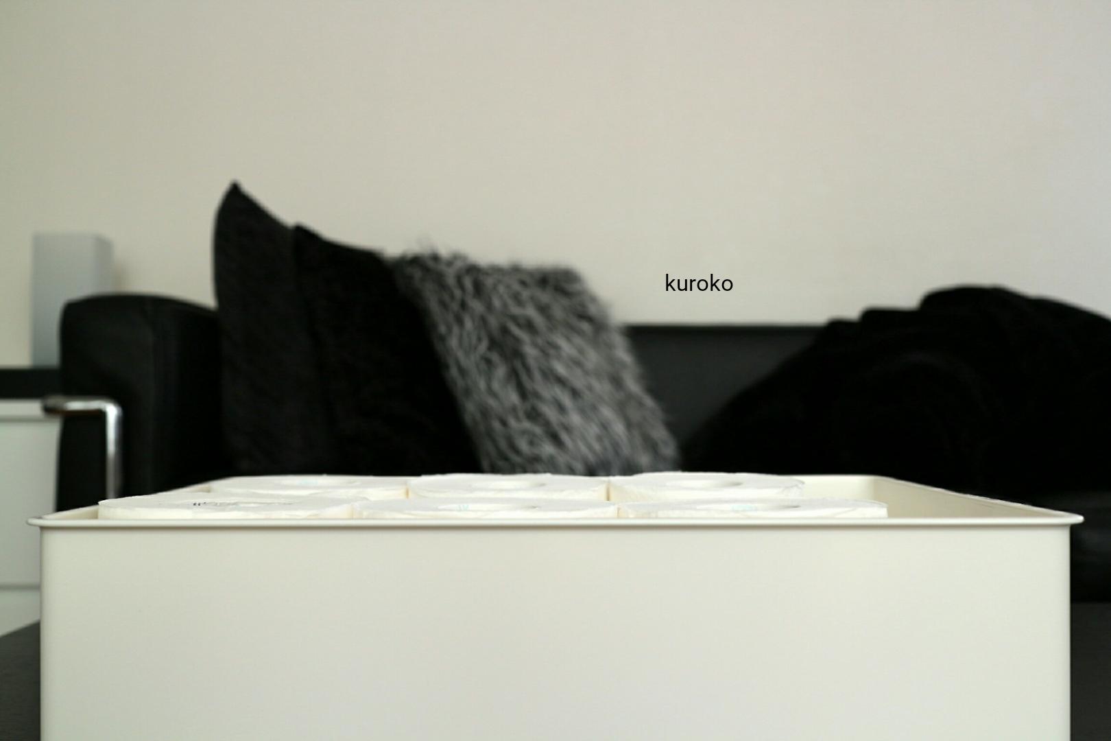 横から見たインボックスに縦に収納したトイレットペーパー