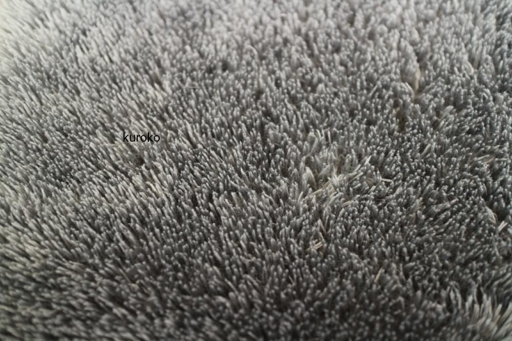 変質してないフワフワのシャギーラグの毛部分